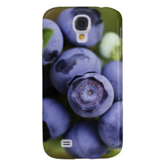 blueberry lover galaxy s4 cover