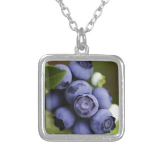 blueberry lover necklaces
