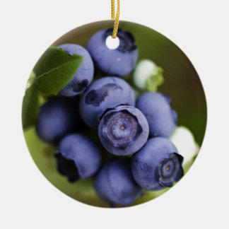 blueberry lover Double-Sided ceramic round christmas ornament