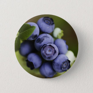 blueberry lover pinback button
