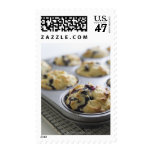 Blueberry muffins in a baking tin on a cooling postage stamp