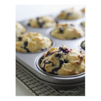Blueberry muffins in a baking tin on a cooling postcard