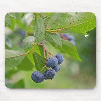 Blueberry Rain Mouse Pad