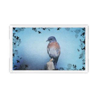 Bluebird Acryllic Tray Rectangle Serving Trays