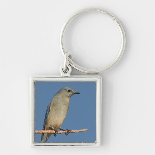 bluebird and blue sky Silver-Colored square keychain