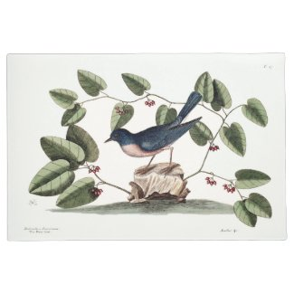 Bluebird and Smilax Lithograph 24