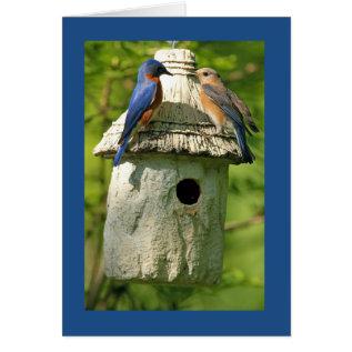 Bluebird Anniversary Card at Zazzle