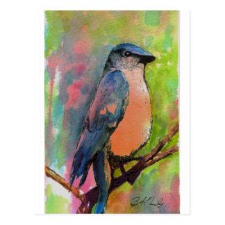 """Bluebird at Sunset"" Painting Postcard"