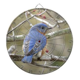 Bluebird Backside Dartboard