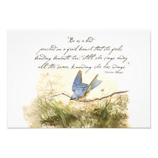Bluebird Bird on a Branch Victor Hugo Poem Photo Print