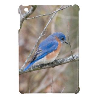 Bluebird Blue Bird in Tree Case For The iPad Mini