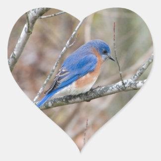 Bluebird Blue Bird in Tree Heart Sticker