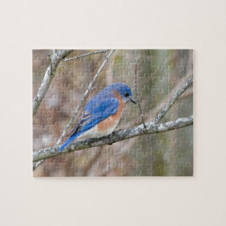 Bluebird Blue Bird in Tree Jigsaw Puzzle