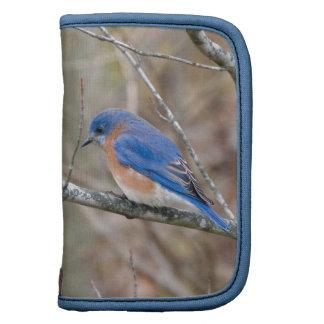 Bluebird Blue Bird in Tree Folio Planner