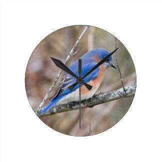 Bluebird Blue Bird in Tree Round Clock