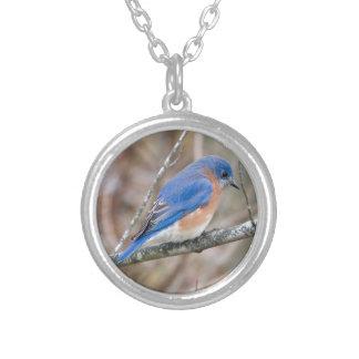 Bluebird Blue Bird in Tree Round Pendant Necklace
