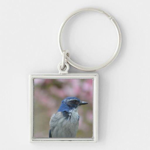 Bluebird bonito llavero personalizado
