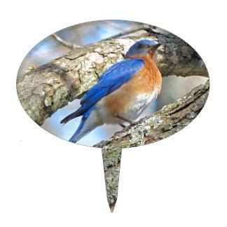 Bluebird Cake Topper
