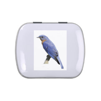 Bluebird Jelly Belly Candy Tin