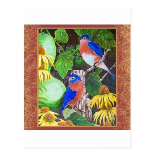 Bluebird con la frontera postal