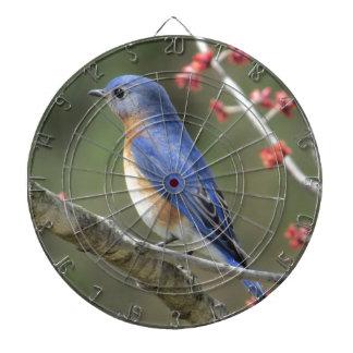 Bluebird Dart Board