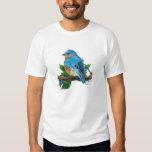 Bluebird de la baya playera