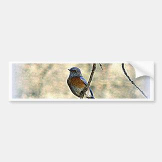 Bluebird de la felicidad pegatina para auto