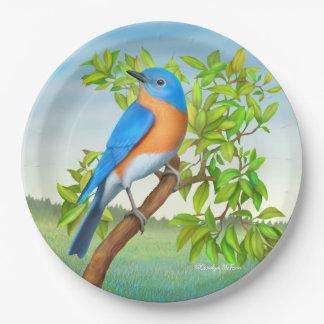 Bluebird del este en las placas de papel del árbol platos de papel