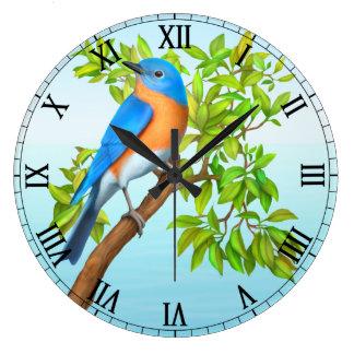 Bluebird del este en reloj de pared del árbol