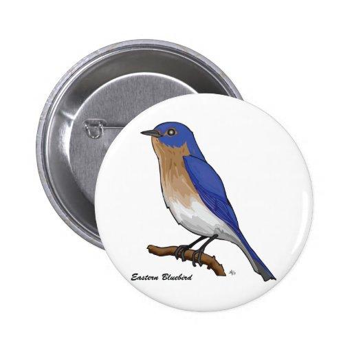 BLUEBIRD DEL ESTE PINS
