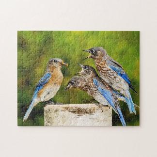 Bluebird del este puzzles
