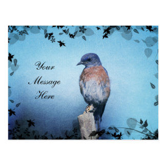 Bluebird Enchanted _Customizable Postcards