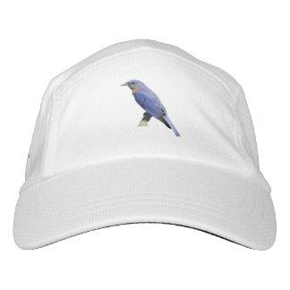 Bluebird Headsweats Hat