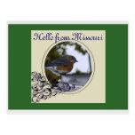 Bluebird, Hello from Missouri Postcard