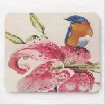 bluebird hermoso en un lirio del stargazer alfombrillas de ratón