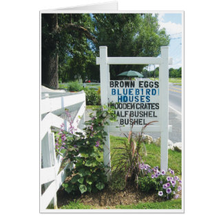 Bluebird Houses in Blue Card