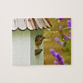 Bluebird in a House Jigsaw Puzzle