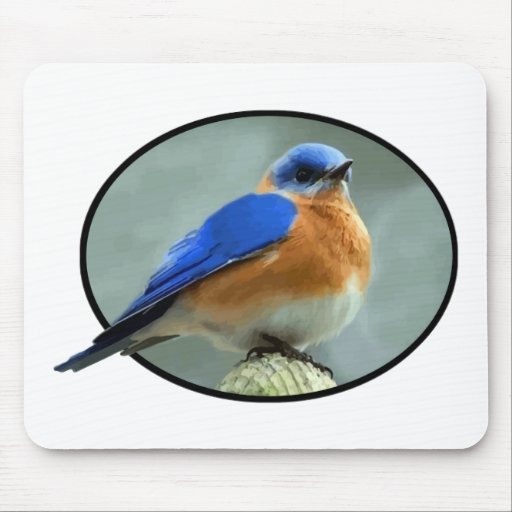 Bluebird in Oval Frame Mouse Pads