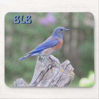 Bluebird in Spring  your Initials Mouse Pad
