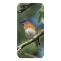 Bluebird iPhone 5/5s Glossy Finish Case. Cover For iPhone SE/5/5s