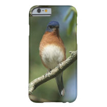Bluebird, iPhone 6 Case, Slim. Barely There iPhone 6 Case