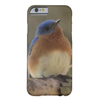 Bluebird IPhone Case