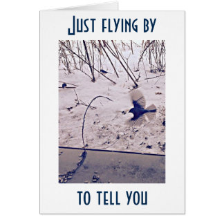 """BLUEBIRD IS FLYING BY JUST TO SAY """"     """" CARD"""