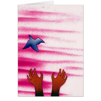 Bluebird - Ltd Edition Cards