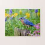 "Bluebird male on fence post in flower garden jigsaw puzzle<br><div class=""desc"">Richard &amp; Susan Day / DanitaDelimont.com 