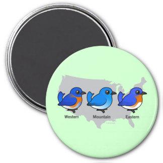 Bluebird Map 3 Inch Round Magnet