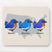Bluebird Map Mousepad