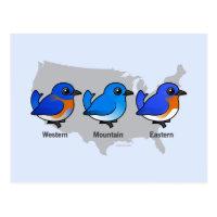 Bluebird Map Postcard