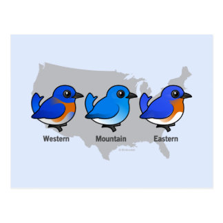 Bluebird Map Postcard
