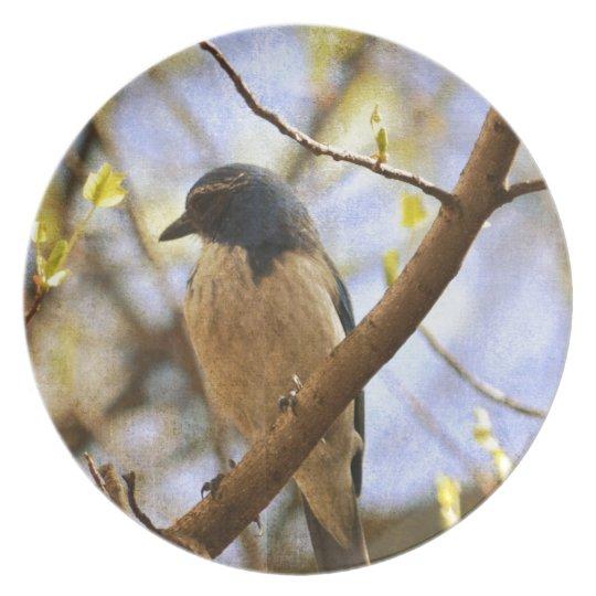 Bluebird Melamine Plate